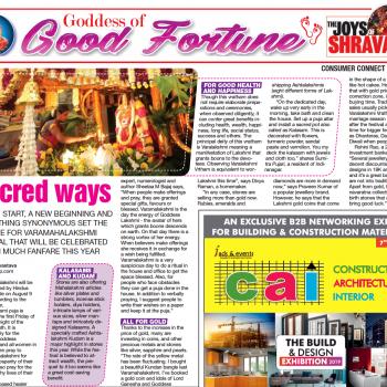 Sheelaa In Bangalore Mirror